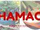 bivouac-bushcraft-hamac
