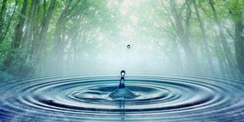 filtrer l'eau dans la nature