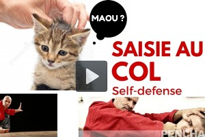 self-defense-video