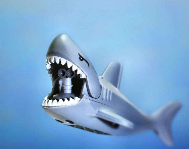 immobilit tonique les 2 secrets pour hypnotiser un requin guide de survie. Black Bedroom Furniture Sets. Home Design Ideas