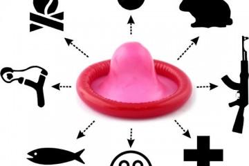 survie-preservatif